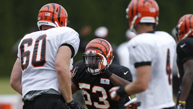 Cincinnati Bengals linebacker Marquis Flowers gets into a scrap with center T.J. Johnson during training camp downtown.
