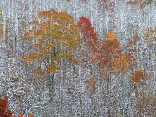 Virginia Snowfall