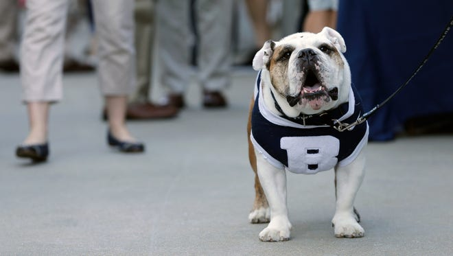 """The Butler mascot """"Butler Blue III"""" sits outside the PNC Arena during a fan pregame tailgate event ahead of a first-round men's college basketball game in the NCAA Tournament between Butler and Texas Tech, Thursday, March 17, 2016, in Raleigh, N.C. NCAA rules prohibit live animals into a venue until the Final Four. (AP Photo/Chuck Burton)"""
