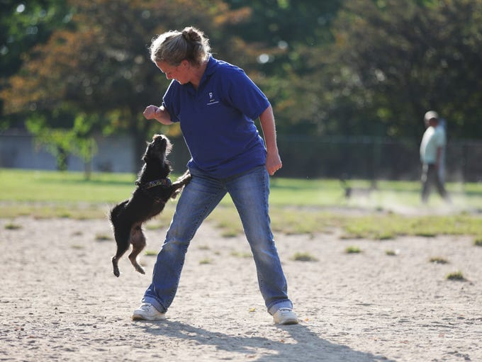Shelley Bobbett plays with Max at Broad Ripple Dog