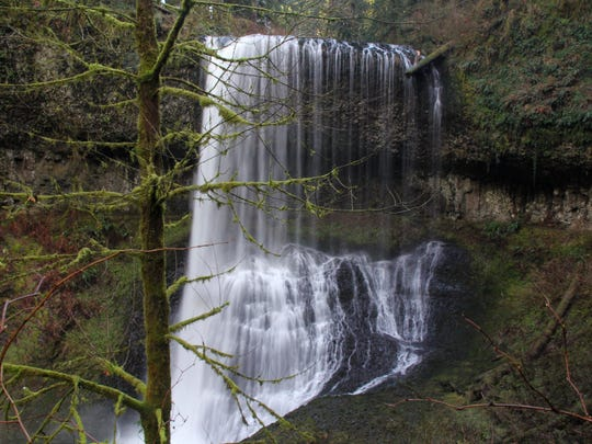 Middle North Falls is a 106 foot tall falls at Silver Falls State Park.