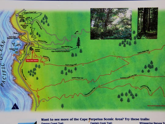 The parking area at the Cape Perpetua Visitor's Center doubles as the trailhead for the Cook's Ridge Trail. There are maps and signs to keep you on track.