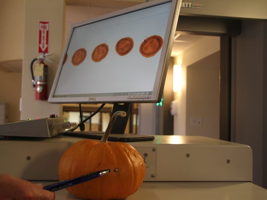 An X-ray image of a pumpkin shows a metal objected imbeded in the side, much like an x-ray image of Halloween candy would show any pieces which have been tampered with.