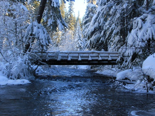 A bridge leads across Salt Creek and into the forest where Diamond Creek Falls Loop leads snowshoers and skiers.