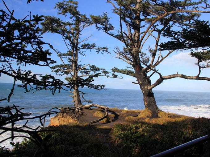 Ocean views along the Cape Arago Loop.