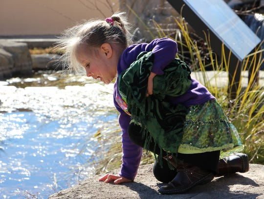 A child looks at animals at Living Desert Zoo and Gardens