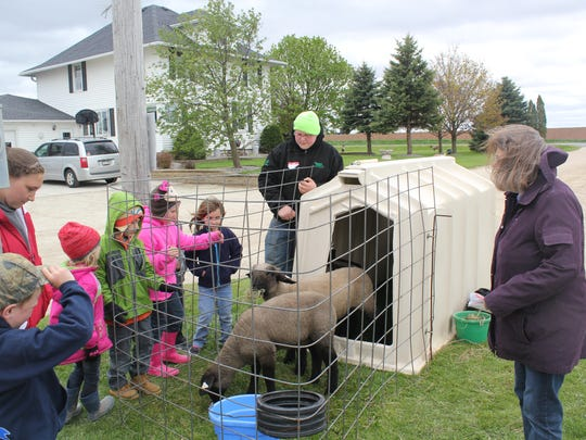 Each year the Valders FFA hosts a Kindergarten Day on the Farm. President Kip Grotegut, black coat, talks about sheep to kindergarteners from Valders Elementary School.