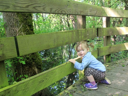 Lucy Urness, 1, explores the boardwalk on the Rail Trail at Ankeny National Wildlife Refuge.