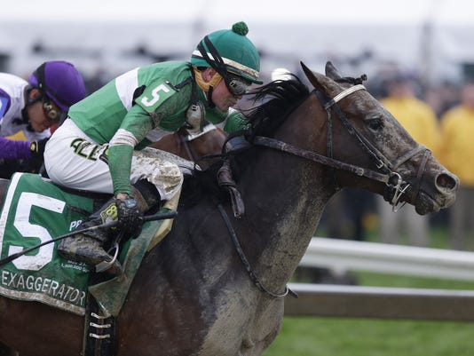 2016 Preakness Stakes Exaggerator
