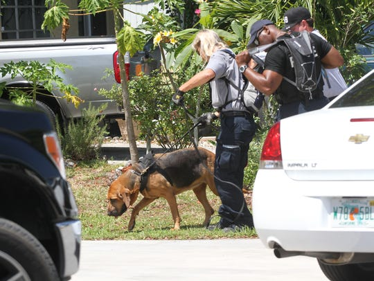 A bloodhound search and rescue team searches the home