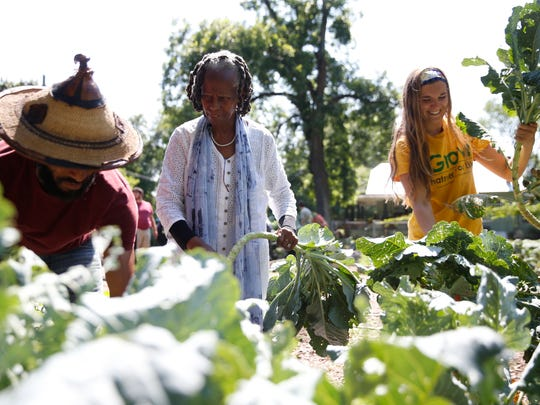 Sundiata Ameh-El, from left, Miaisha Mitchell and Melanie Marques work together to pull collard greens from the vegetable bed at IGrow, a Frenchtown community garden set up to foster local youth volunteer development and fresh produce for an area considered to be a food desert.
