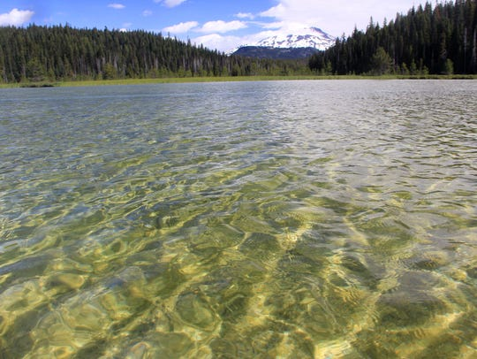 The clear water of Hosmer Lake in Central Oregon makes