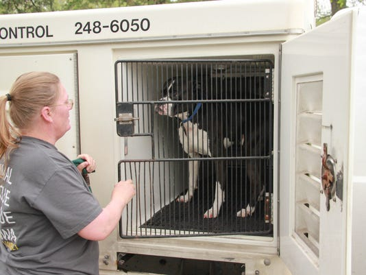 636022843253410918-ARL-Animal-Control-Officer-Helps-Stray-Dog.jpg