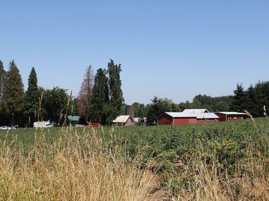 A shooting outside a rural home outside Woodburn left three dead and one injured Monday morning.