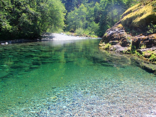"The ""First Pool"" is a small swimming hole just upstream of the Elkhorn Trailhead on the Little North Santiam River. The river is running almost twice as high as a year ago and well above normal."
