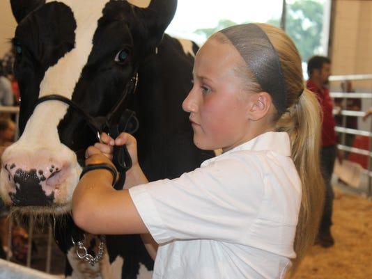 636052107691329386-milk-auction.JPG