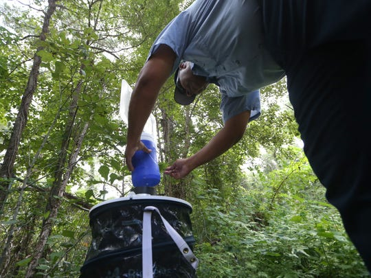 Lawrence Medlock, a Leon County mosquito technician, inspects a mosquito trap, set up for the county to collect specimen for testing.