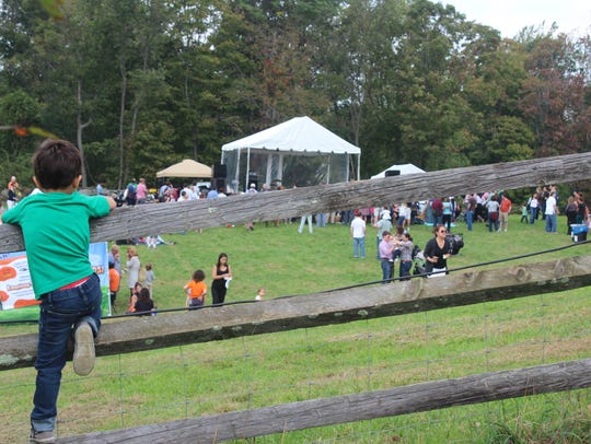 The popular Harvest Fest at Stone Barns returns, Oct. 6.