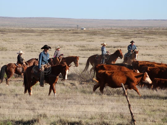 Often the younger generation is looking for a life outside the family ranch.