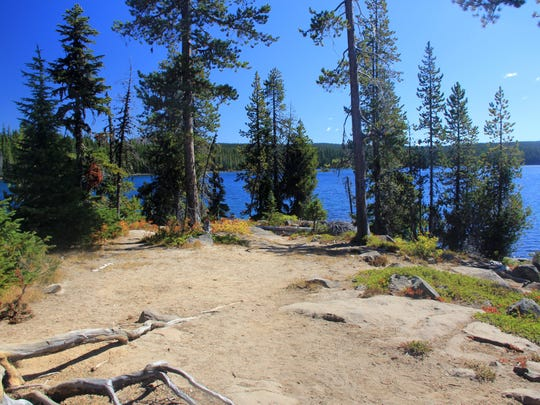 No camping is allowed on the Waldo Lake islands, but you can visit for the day.