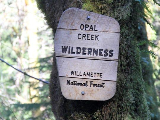 Entering the Opal Creek Wilderness.