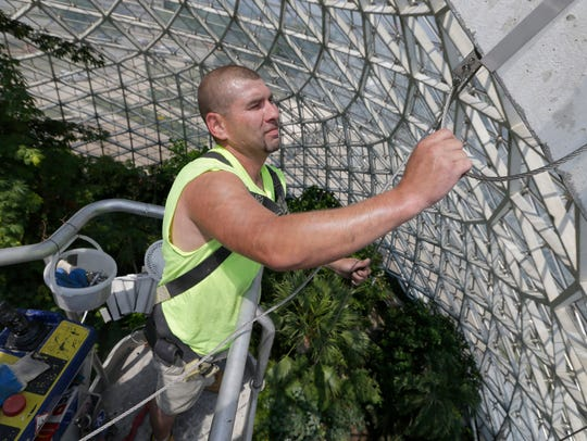 Ken Glyzewski, a foreman with Masonry Restoration out of Milwaukee, works in the Tropical Dome at the Mitchell Park Horticultural Conservatory in 2016 to place steel cable and brackets on the internal frame that will support wire mesh. The mesh protects the public by preventing concrete that flakes off the aging frame from falling onto walkways.