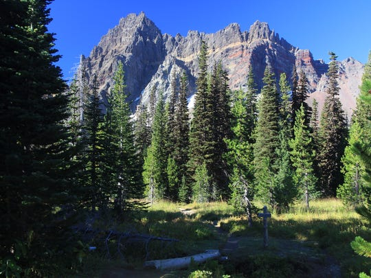 Lower Canyon Creek Meadows features views of Three