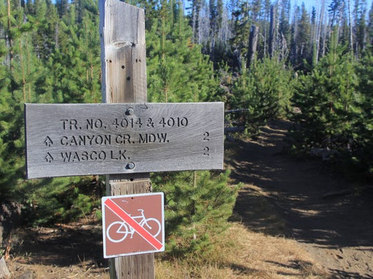 The trail to Canyon Creek Meadows can be done in a