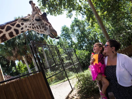 #filephoto NDN 1022 Boo at the Zoo 003 Jump photo