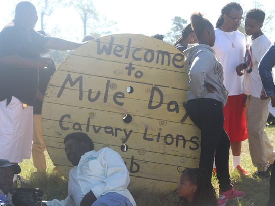 Calvary, Georgia celebrated the 44th Annual Mule Day Saturday.