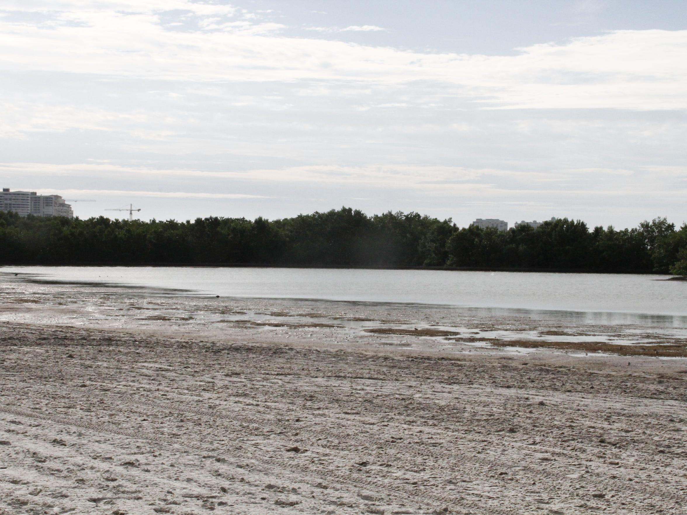 Friends of Tigertail Beach is a non-profit organization