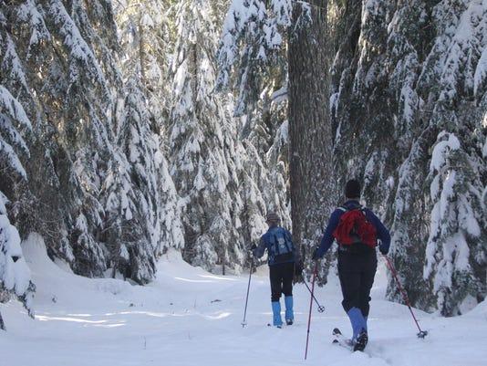 636189763530979715-Snowy-Trail4.jpg