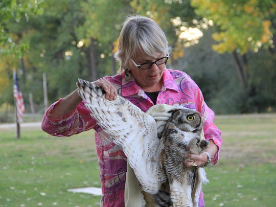 Mikal Deese, founder of On A Wing And A Prayer, hold Fisher shortly before the great horned owl's release on Sept. 30 at Wines of the San Juan in Blanco.