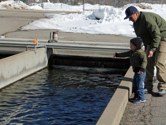 Patrons can feed the fish at the Durango Fish Hatchery