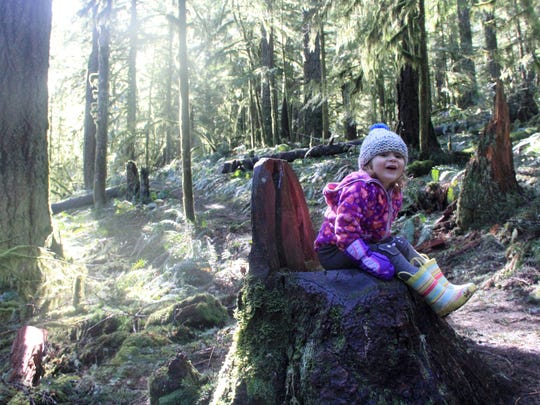 Lucy Urness, 2, has fun on a chair-shaped stump found on Butte Creek Falls Trail.