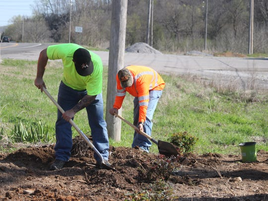City employees planted forty Knock-Out Rose bushes and forty Emerald Beauty Arborvitae trees for a grant-funded project to beautify the city.
