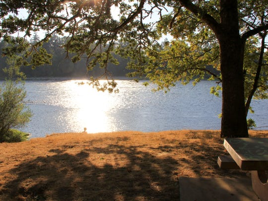 The Coho Picnic Area is at Spongs Landing County Park along the banks of the Willamette River.