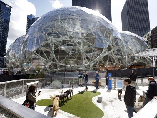 Amazon_Spheres