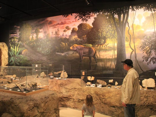 Exhibits in the Thomas Condon Paleontology Center.