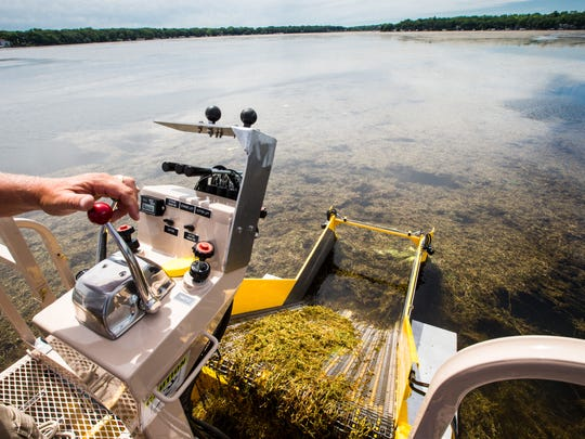 Mark Petersen runs an aquatic weed harvesting boat collecting curly-leaf pondweed in East Okoboji Lake, Wednesday, June 14, 2017.