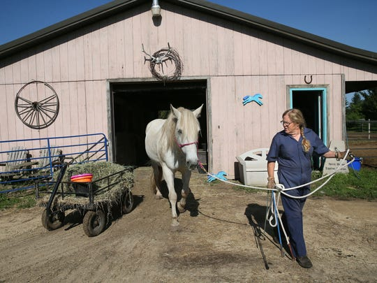 Dee Dee Golberg and her husband, Jeff, run Spirit Horse Equine Rescue in Janesville.