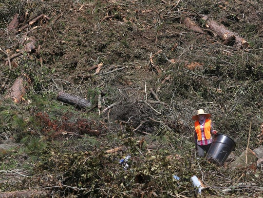 More than 34,000 tons of fallen trees and yard waste