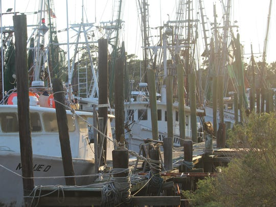 Rough seas associated with Hurricane Irma are keeping a fleet of shrimp boats moored at docks in McClellanville, South Carolina.