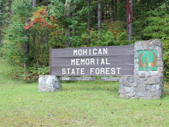 Mohican-Memorial State Forest