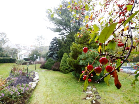 The garden of Earl Butler of Vestal on Thursday September 14, 2017. Butler has been gardening at his home since he had the home built in 1975.