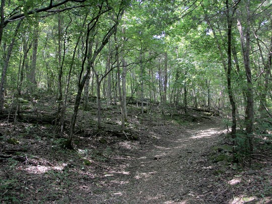 Henning Conservation Area offers more than five miles