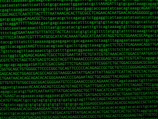 The DNA sequence from a portion of a chromosome is