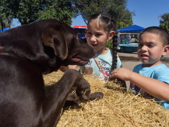 Two children interact with a dog during Pawfest at the Gulf Coast Humane Society on Saturday, October 7, 2017 in Corpus Christi.