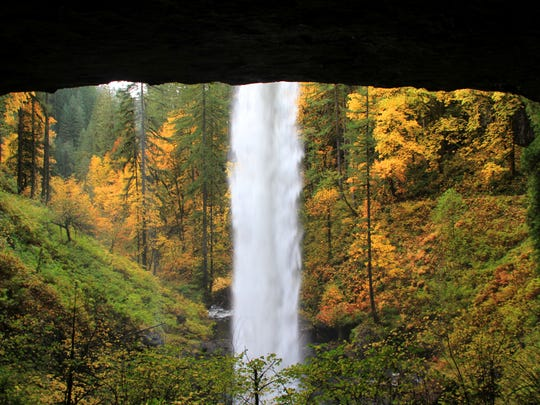 The view from behind North Falls at Silver Falls State Park.
