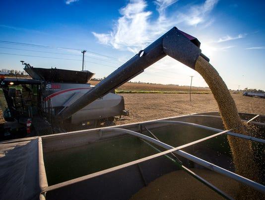 101817_drone_soybean_harvest_RWHITE_1753